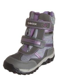 "Geox Winterboots ""Alaska"" in grau/ lila"