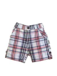 Gelati Shorts in Dunkelblau/ Rot